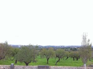 Vistas desde Moscari