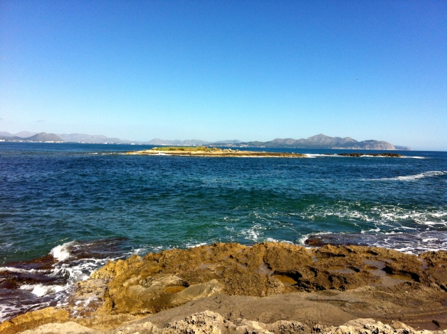 Illa des Porros, costa de Son Real
