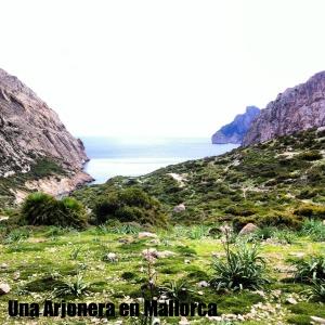 Punto de Coll del Morro y bifurcación de camino hacia Cala Bóquer